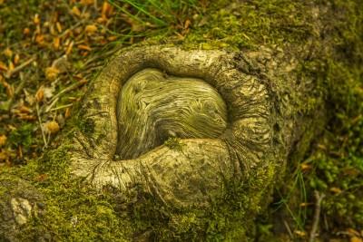 tree-850885_1280